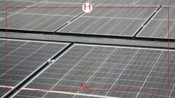 Una recente sentenza del Tar della Puglia dichiara che un pergolato a sostegno di impianto fotovoltaico non ha necessità di titolo edilizio.